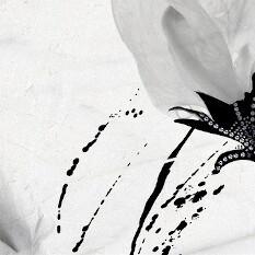 dekor stenska ploscica madagascar geotiles topdom 1 uai