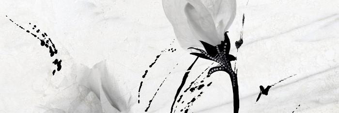 dekor stenska ploscica madagascar geotiles topdom 1