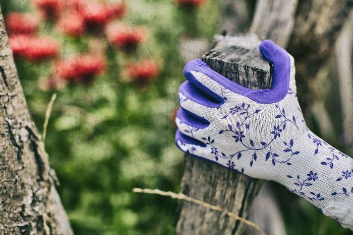 vrtnarske rokavice gebol flower lila topdom 2