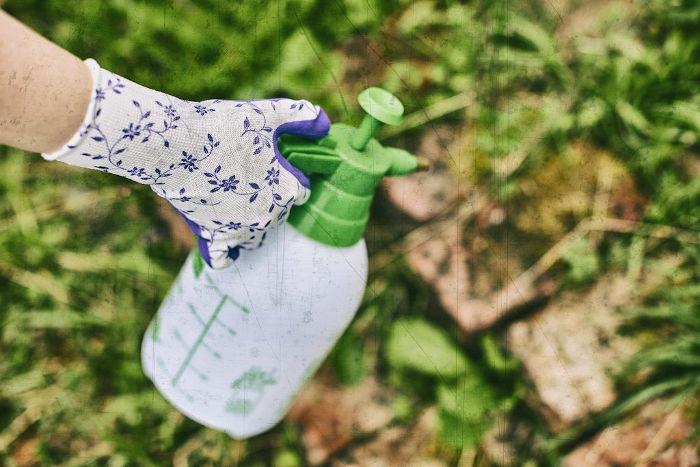 vrtnarske rokavice gebol flower lila topdom 3